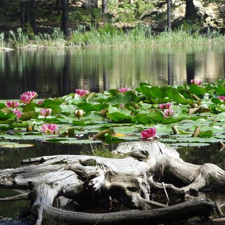 En passant par le lac de Creno