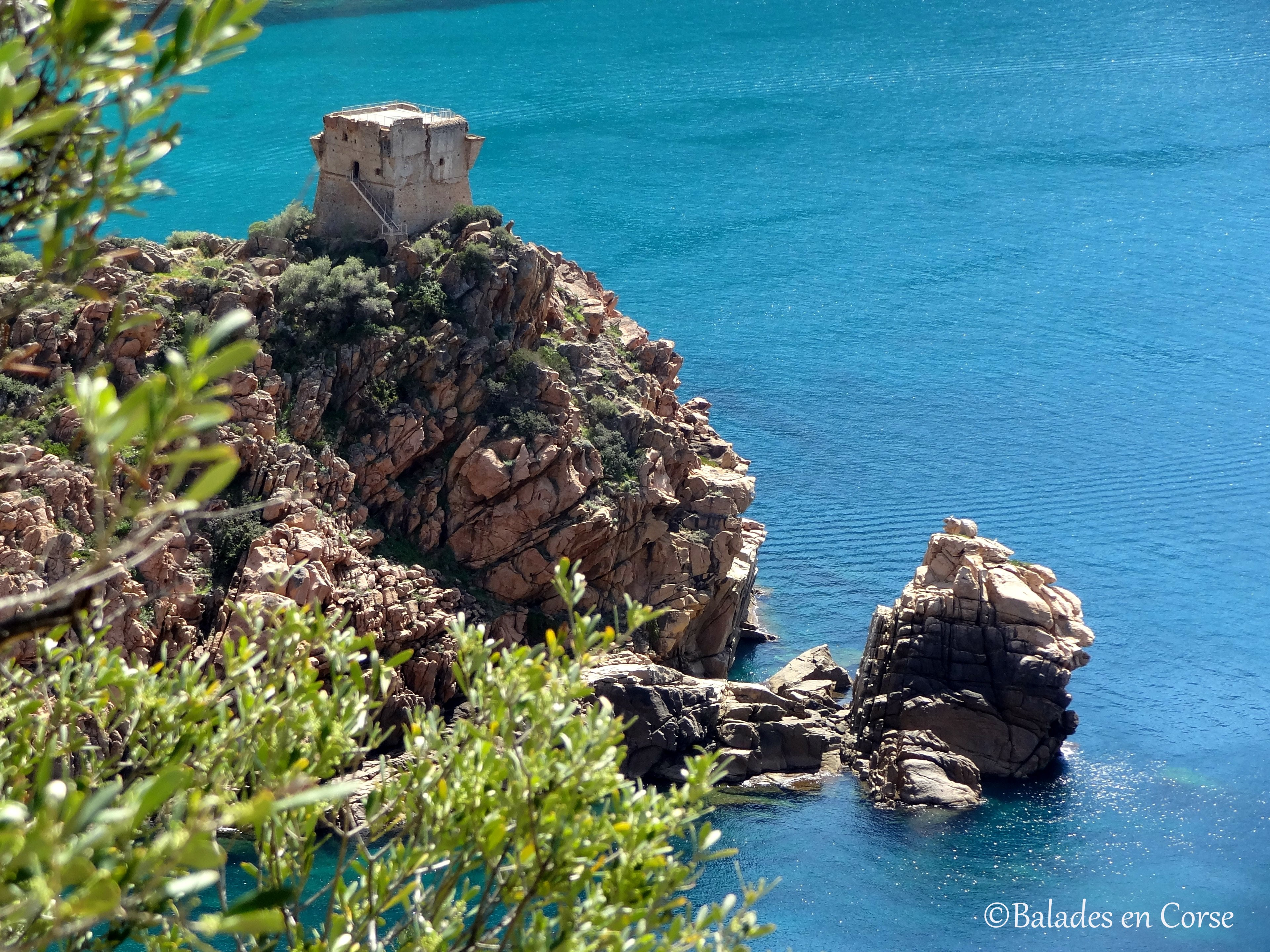 Balades en Corse | Porto