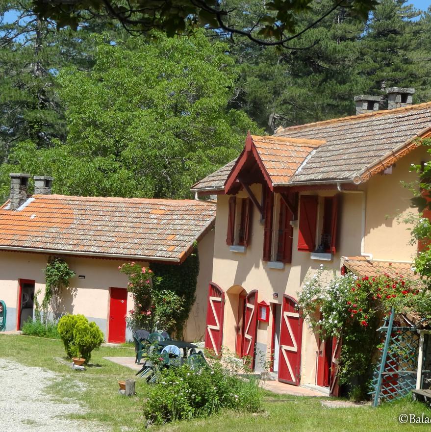 Hôtel le Vizzavona - Le chalet