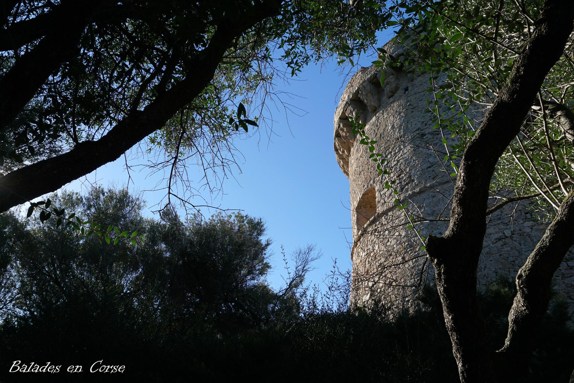 Belvédère-Campomoro