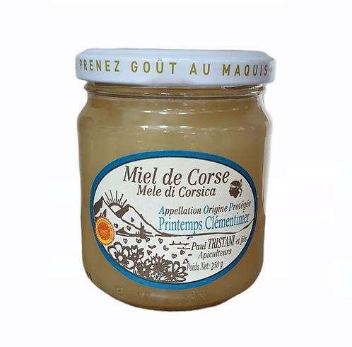 Miel de Corse Printemps Clementinier 230G