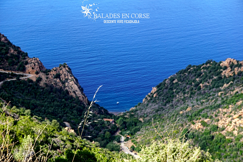 Balades en Corse | Piana