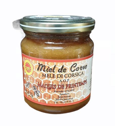 Miel de Maquis de Printemps Avignon 250G