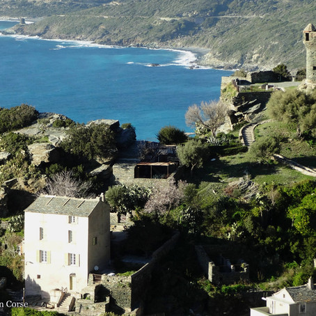 Balade à Nonza dans le Cap Corse