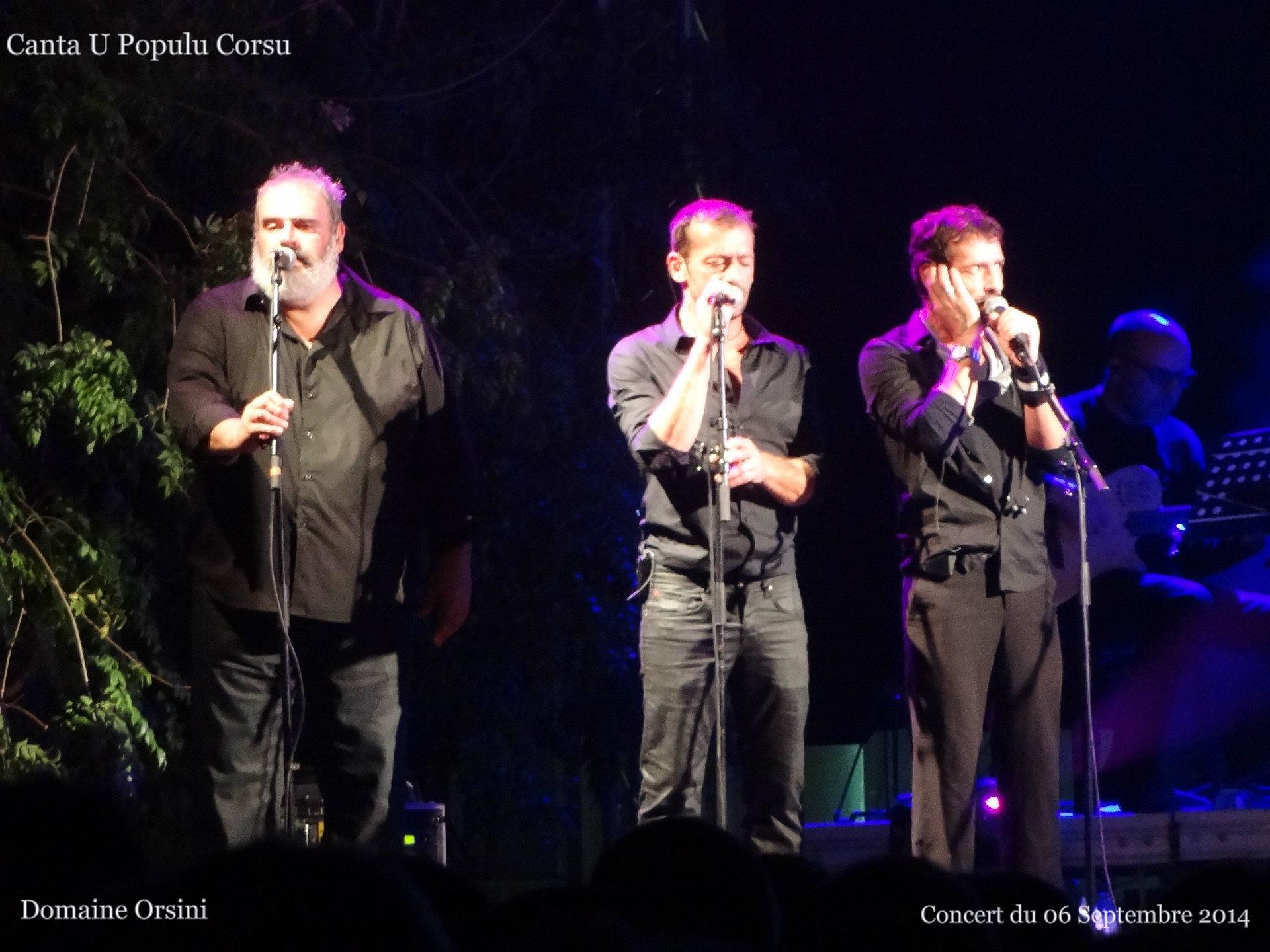 Concert au Domaine Orsini en 2014