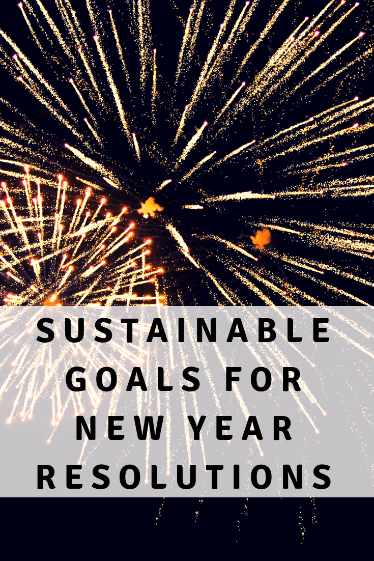 Sustainable Goals for New Year Resolutions