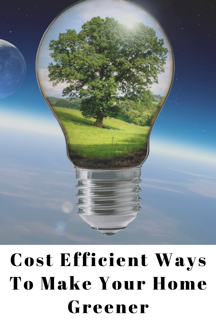 Cost-Efficient Ways to Make Your Home Greener