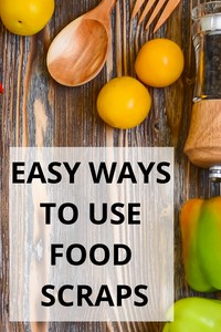 Easy Ways To Use Food Scraps