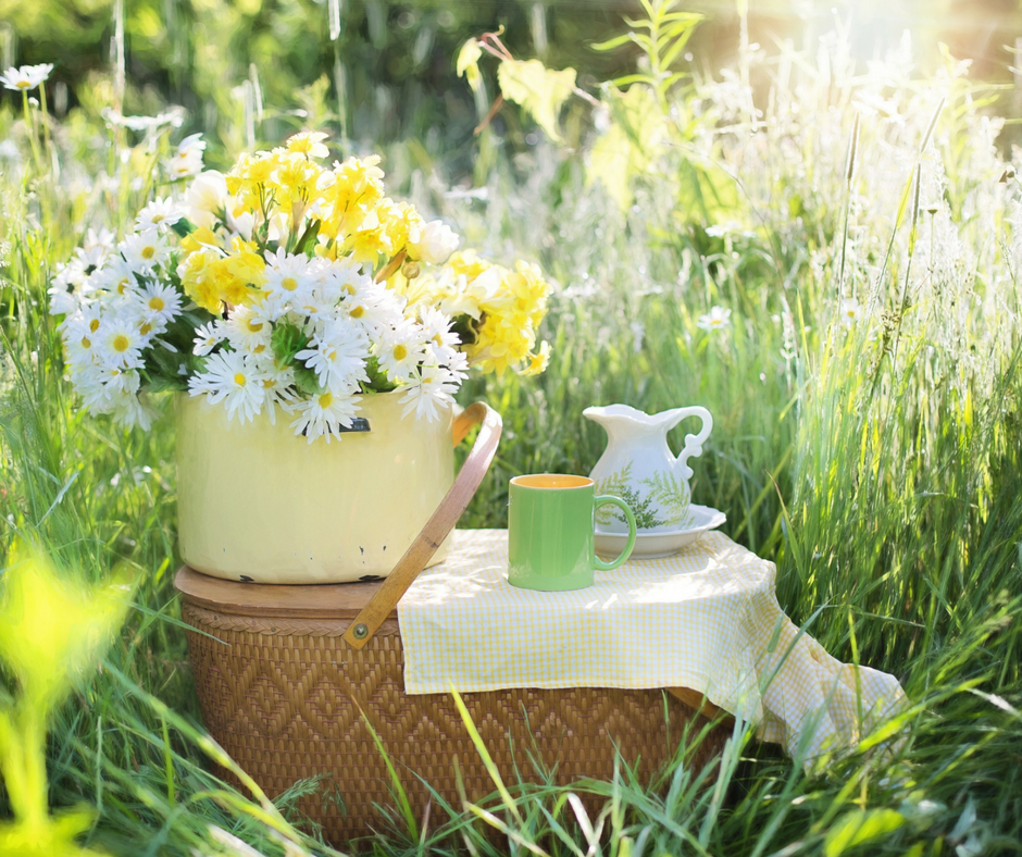 Mothers day Picnic idea