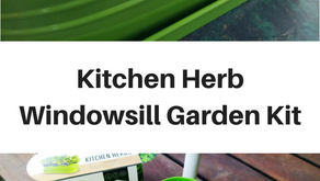Kitchen Herb Windowsill Garden Kit - Review