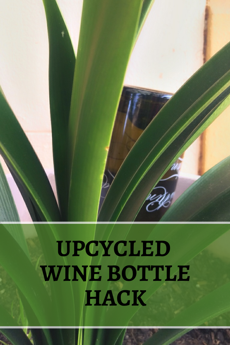 Upcycled Your Wine Bottles to Water Your Plants