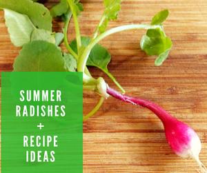 Summer Radishes and Recipe Ideas