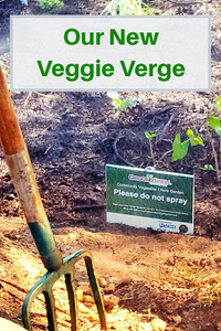 Our New Veggie Verge