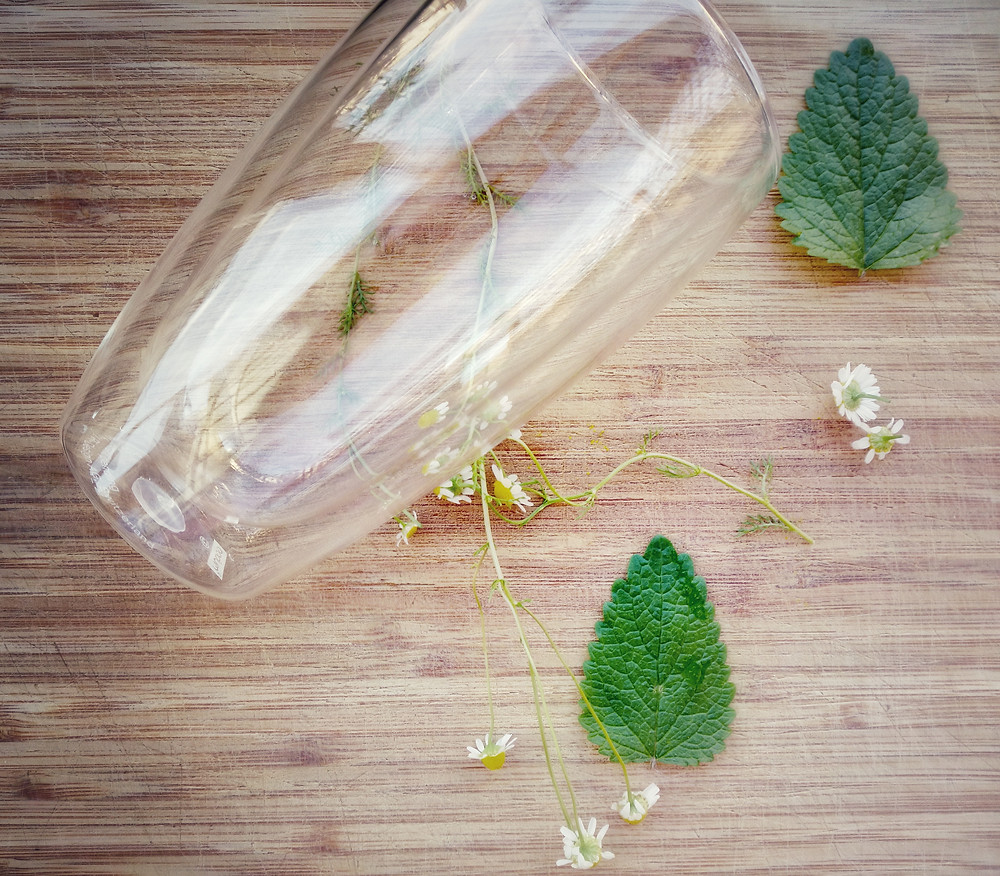Fresh chamomile and lemonbalm