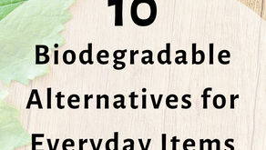 10 Biodegradable Alternatives For Everyday Items