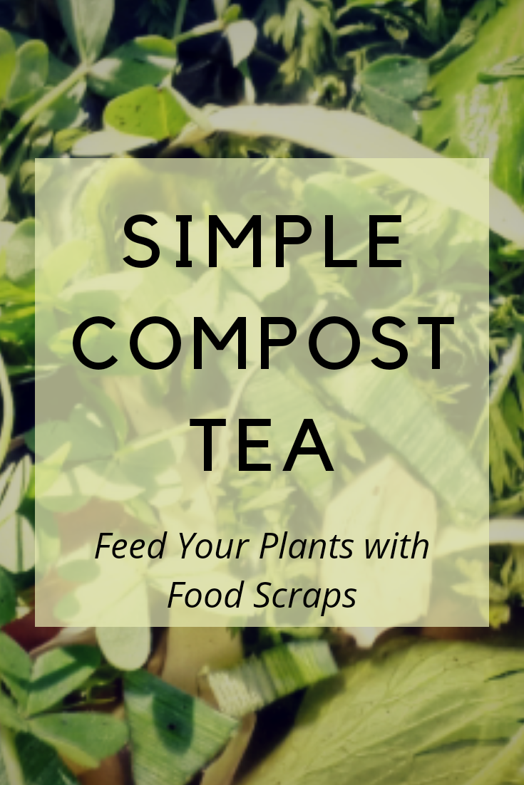 Simple Compost Tea : Feed your plants with food waste