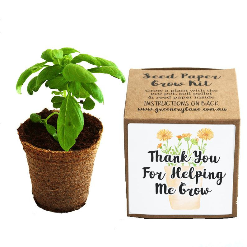 Seed Paper Grow Kit