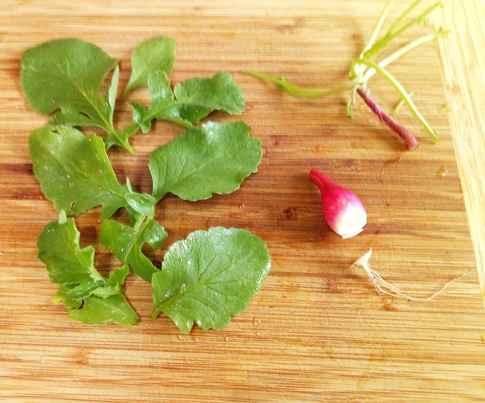 Prepping radishes - Yum!