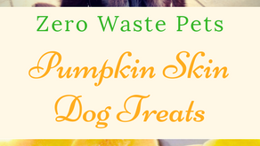 Pumpkin Skin Dog Treats - Zero Waste