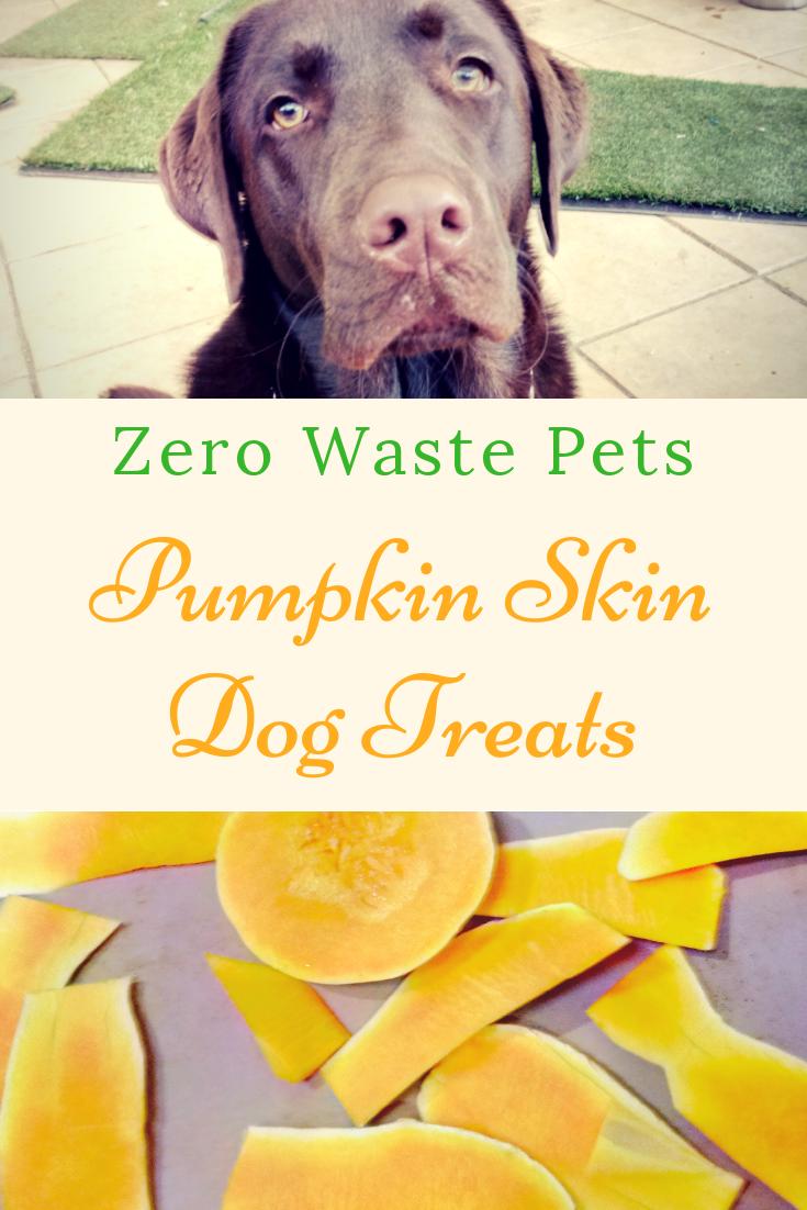Pumpkin Skin Dog Treats Recipe - Zero Waste