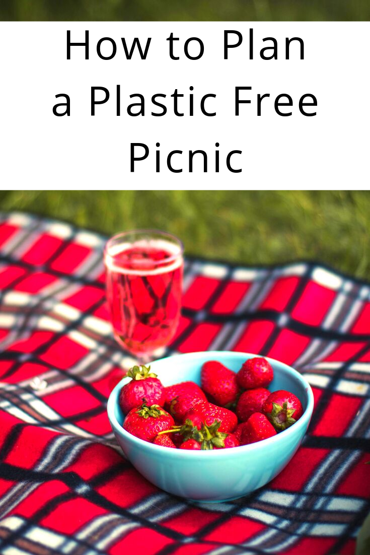 How To Plan a Plastic Free Picnic