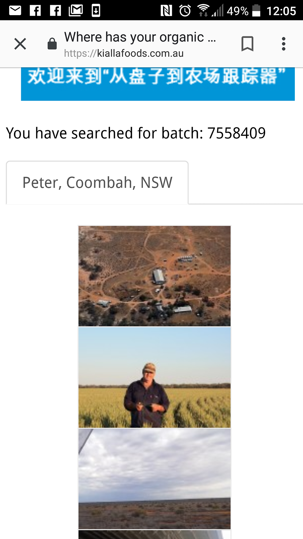 My Spelt came from Peter in Coombah, NSW