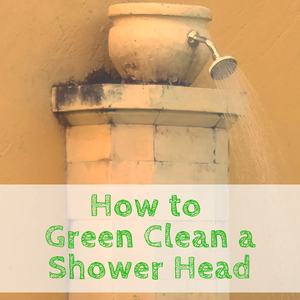 How to Green Clean a Shower Head