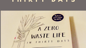 Book Review : A Zero Waste Life in 30 Days