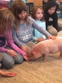 FernLeaf Community Charter School children meeting a pig