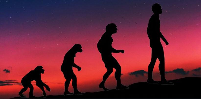 evolutionmain_resize_md.jpg