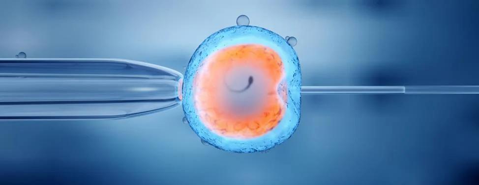 faq-fertility-services-at-ucsf-2x.jpg