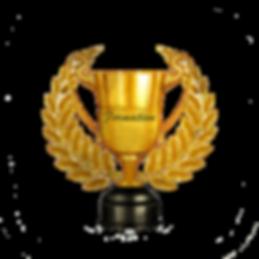 Pillar of Formation Award.png