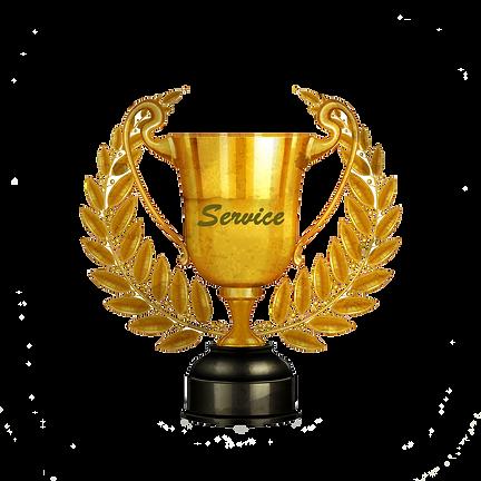 Pillar of Service Award.png