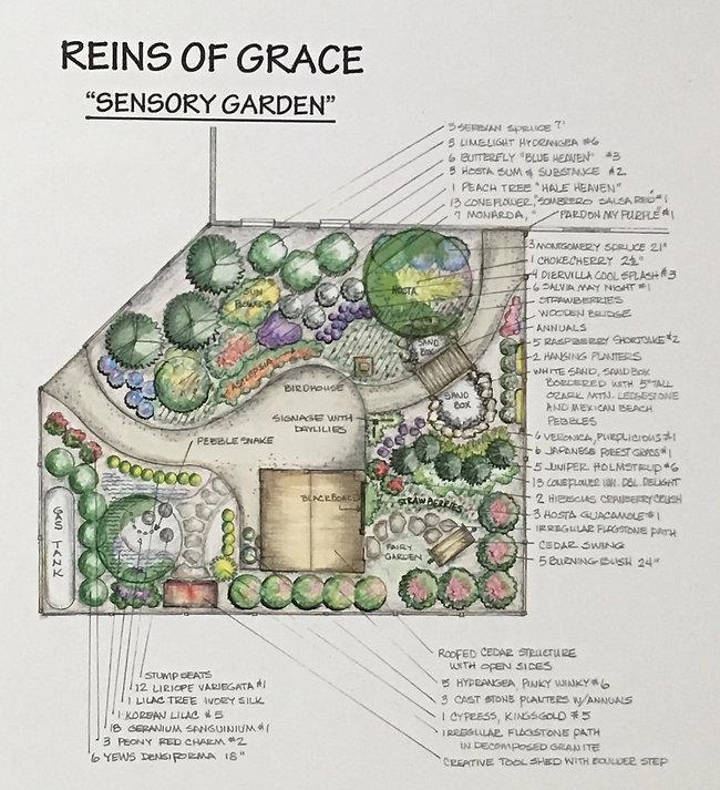 Sensory Garden Layout