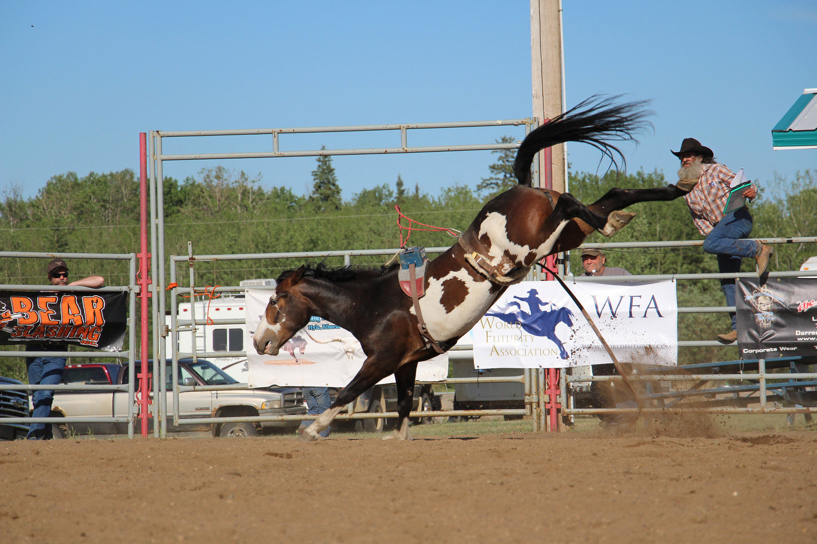 MX #549 Danced With Wolves, Lac La Biche, Alberta, WFA Futurity