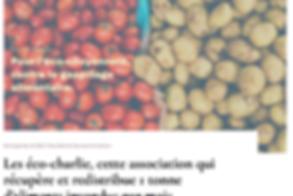 Eco-Blog.png