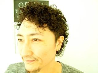 夏だ、パーマだ、カルロスだ。 LINKパーマ祭り