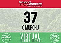 37_O Murchu.jpg