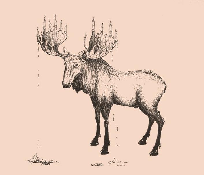 Happy birthday Moose - Aafke de Jong