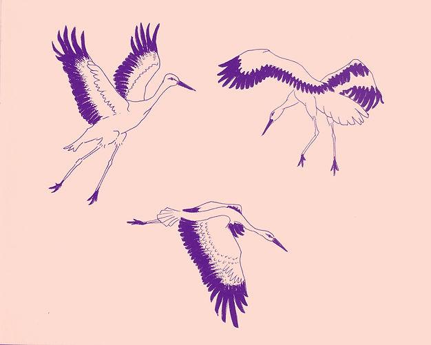 Dancing cranes . Aafke de Jong