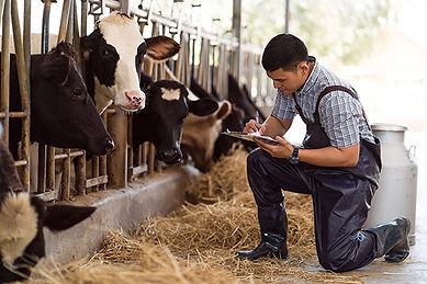 Dairy-farmer-web.jpg