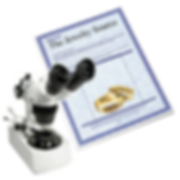 The Jewelry Source appraisal services