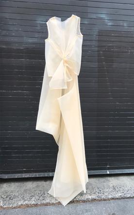 Organza Top + Dress