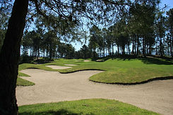 golf amarante 2.jpg