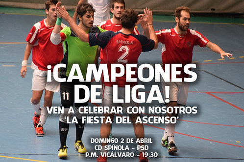 Poster Campeones - Preferente 2016/2017