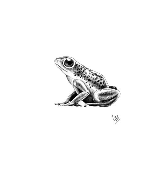 Cutey Frogger