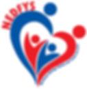 47886 NEDFYS logo_FINAL.jpg