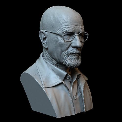 Walter White aka Heisenberg (Bryan Cranston) from Breaking Bad