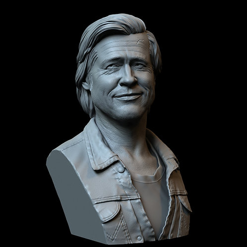 Brad Pitt from 'Once Upon a Time in Hollywood', 3d Printable Bust