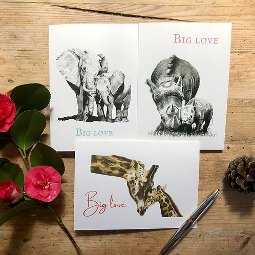 'Big love' greeting card collection